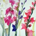 Hospizkal15_Gladiolen